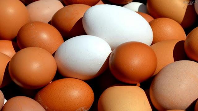 अंडा शाकाहारी है या मांसाहारी क्या आप जानते है? Anda shakahari hai ya mansahari mil gaya jawab