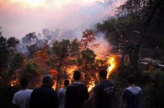 سجنان: تواصل إندلاع الحرائق في الغابات لليوم الرابع على التوالي