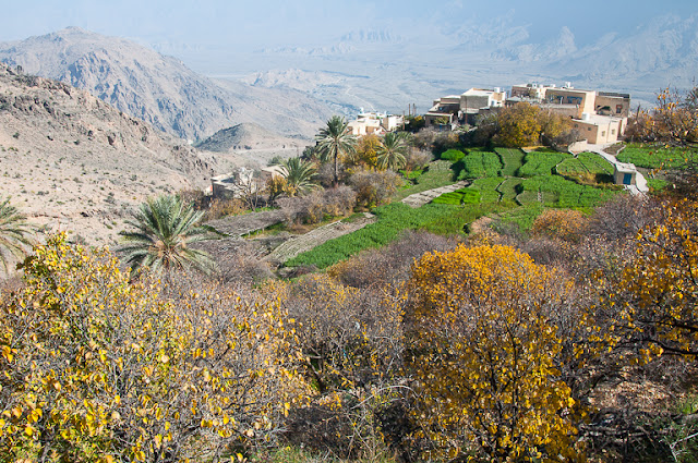 جمال سلطنه عمان