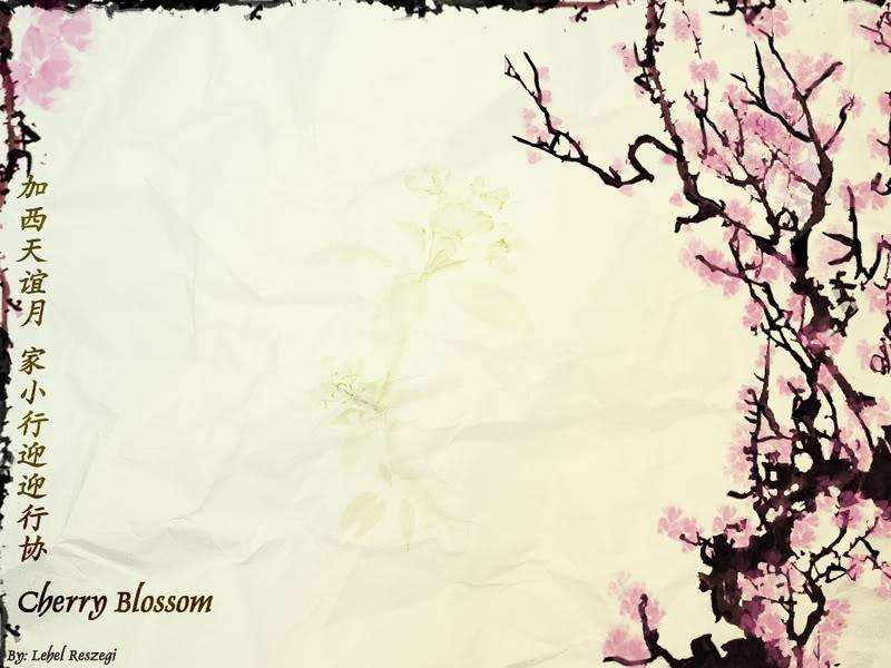 wallpaper sea  cherry blossom background