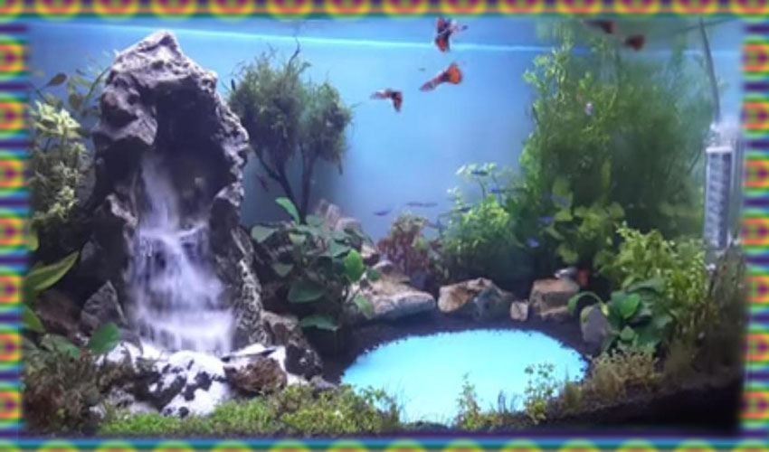 five beautiful designs to aquascape theme with waterfalls rh aquascapeidea blogspot com