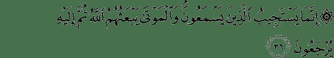Surat Al-An'am Ayat 36