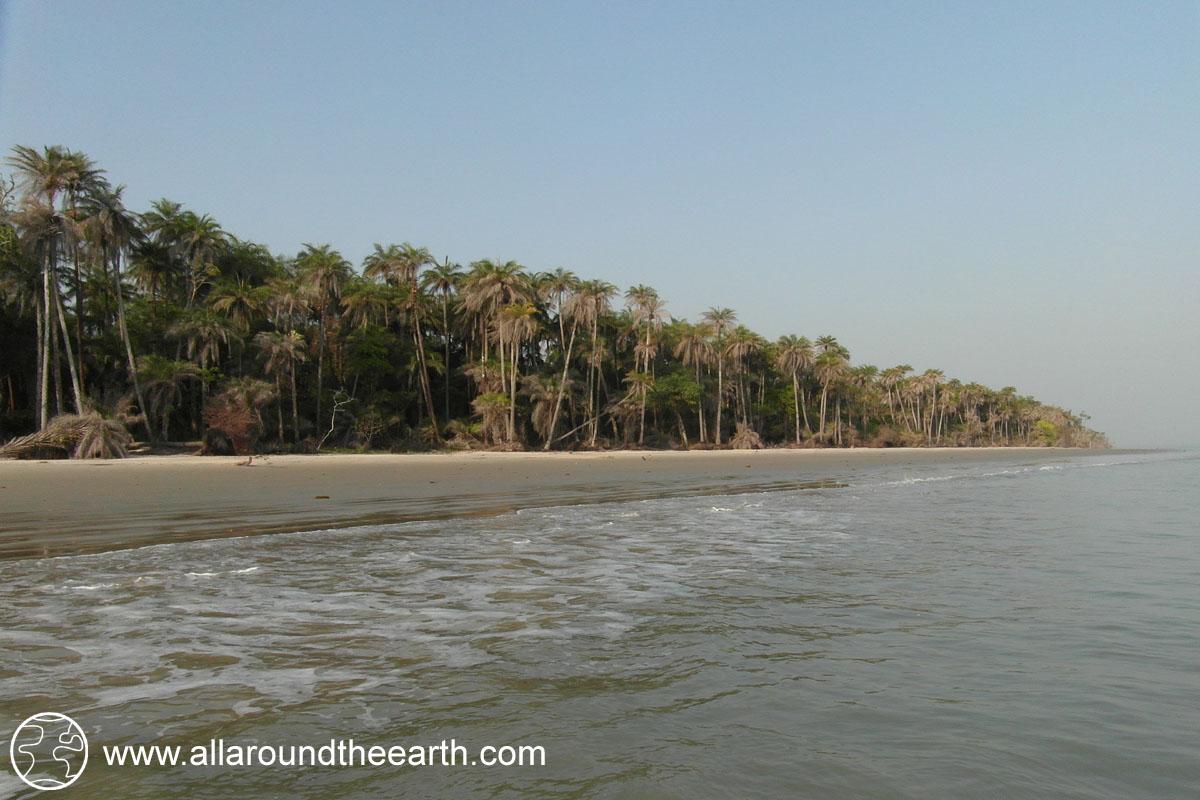 Tropical island beach with palm trees, Bubaque Island, Bijagos Archipelago, Guinea Bissau, West Africa