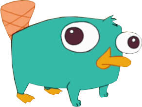 Perry bebe