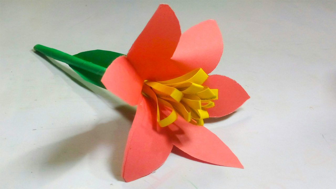 Origami Flowers Kit: 41 Easy-to-fold Models - Includes 98 Sheets ... | 720x1280