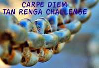 http://chevrefeuillescarpediem.blogspot.in/2015/07/carpe-diem-tan-renga-challenge-95.html