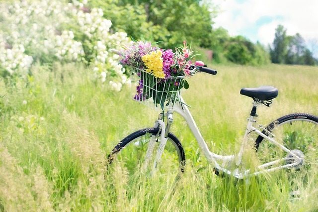 Tips Bersepeda untuk Membeli Sepeda yang Tepat