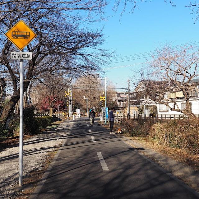 多摩湖自転車道 西武拝島線