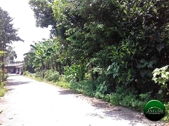 Tanah Pekarangan jalan Cangkringan