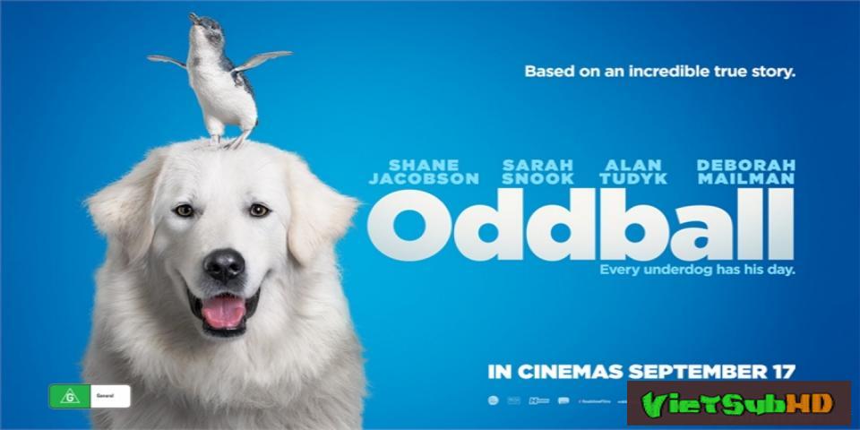 Phim Chú chó Oddball VietSub HD | Oddball And The Penguins 2015