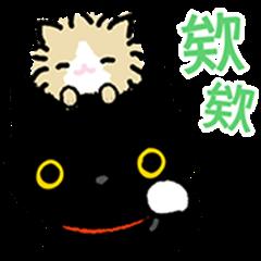 Kutsushita Nyanko: Plenty of Pals