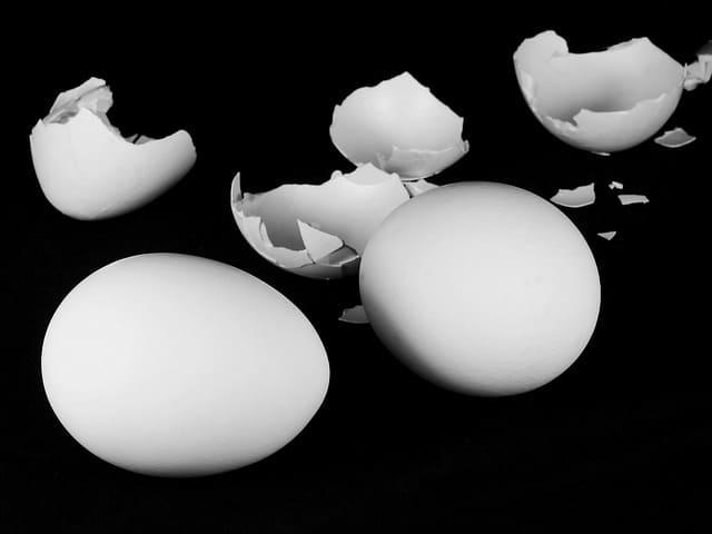 ماهى فوائد قشر البيض للوجه؟