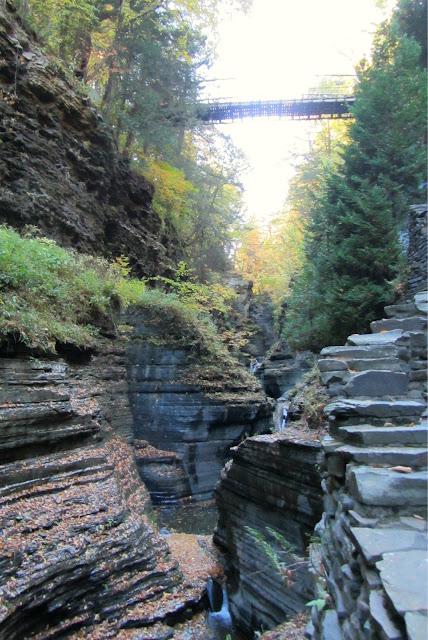 cascades under the suspension bridge at Watkins Glen