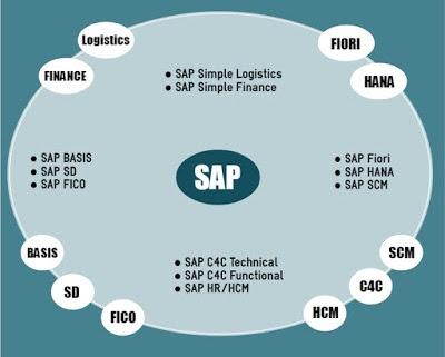 SAP Courses at SAPVITS