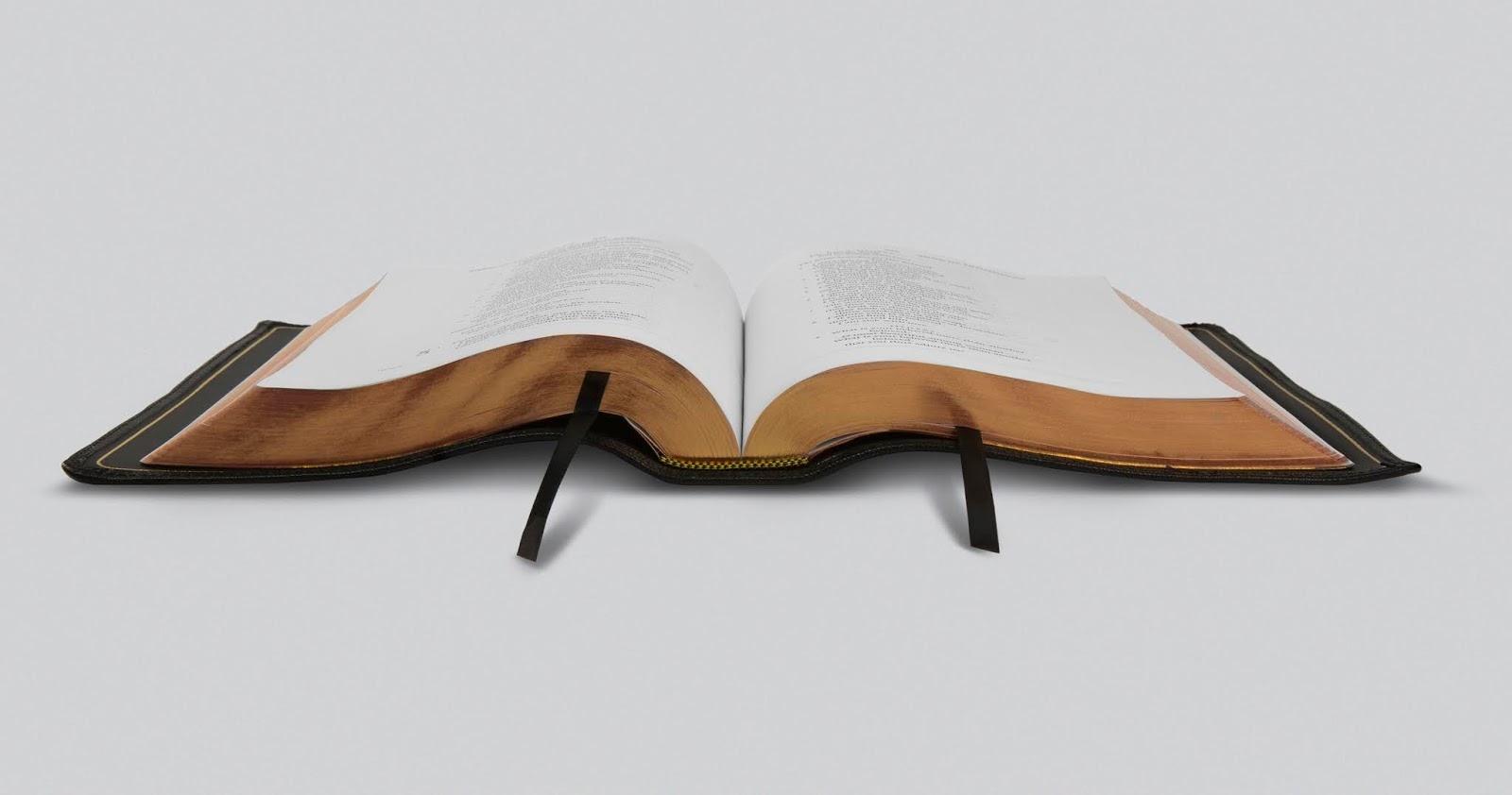 Matthew Dowling: Bible Review: The ESV Preaching Bible from