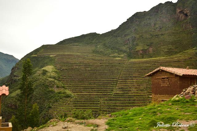 Terrasses de Pisaq au Pérou