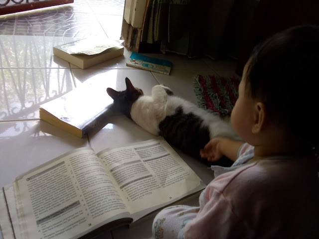 membacakan buku untuk anak sedini mungkin
