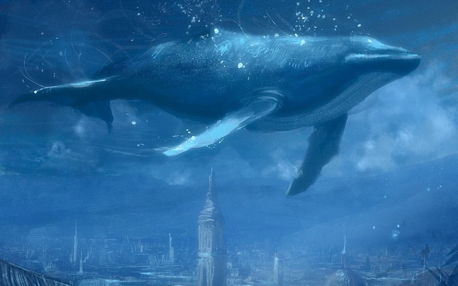 The Blue Whale | The Wildlife
