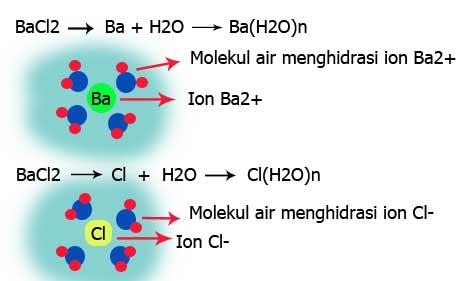 Jenis Jenis Senyawa Asam Basa Dan Garam Beserta Contohnya Part Ii