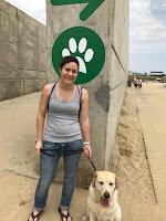 Distintivo de playa para perro: huella de perro