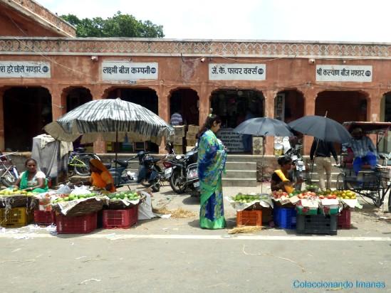Vida en la calle en Jaipur