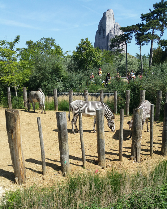 paris with under 5s travel guide