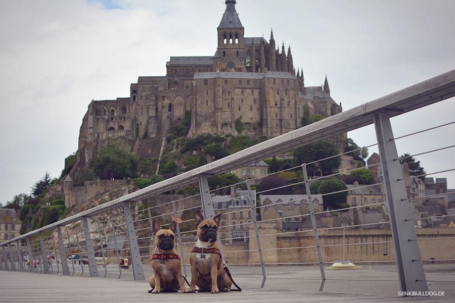 Hundeblog Genki Bulldog -  Le Mont Saint St Michel Normandie Frankreich mit Hunden