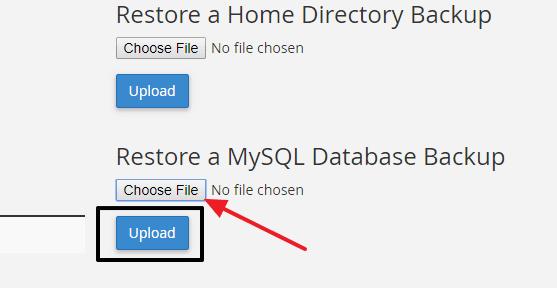restore MySQL database backup