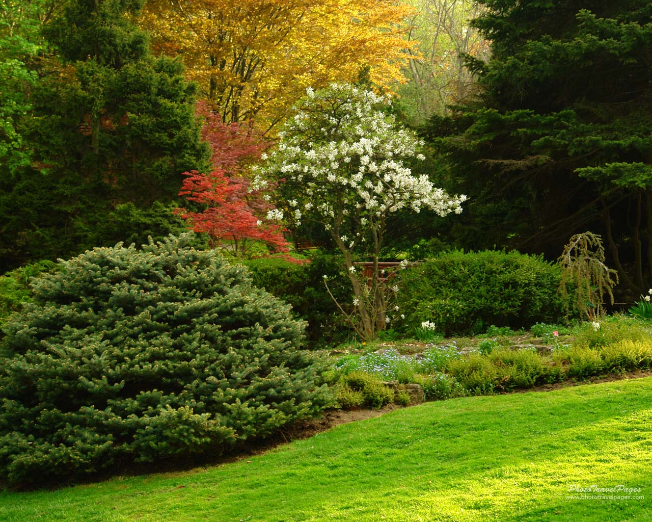 Wallpaper Dinding Pemandangan 3d Foto Foto Kebun Bunga Yang Indah