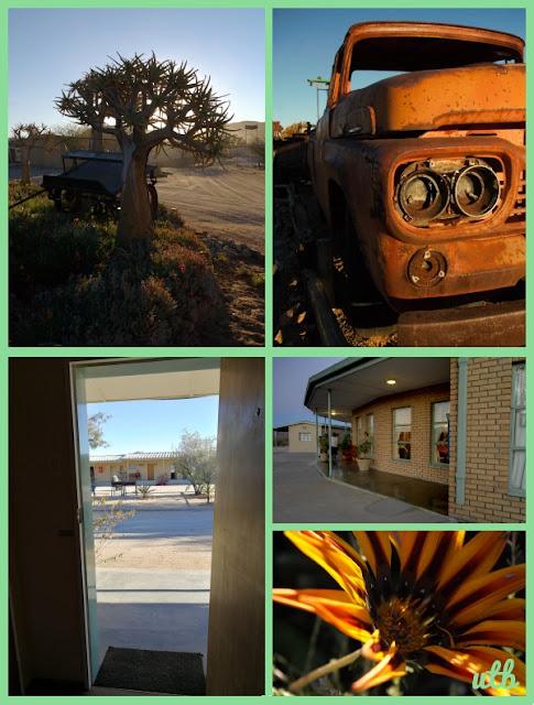 kokerboom-motel