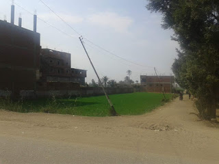 تقاعس المسؤولين عن إصلاح أعمدة الكهرباء يهدد حياة طلاب مدرسة عبدالحليم خزبك الصناعية بالحلمية