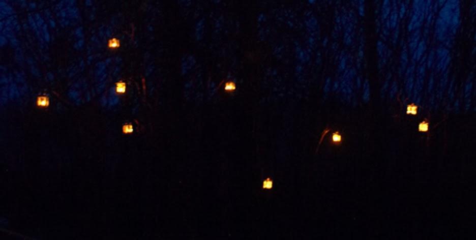 Levende lys i havens buske og træer giver intens stemning til haverum