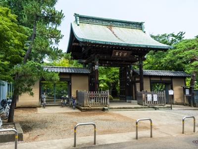 วัดโกโตคุจิ (Gotokuji Temple) @ www.aroundtokyo.net