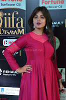 Monal Gajjar in Maroon Gown Stunning Cute Beauty at IIFA Utsavam Awards 2017 035.JPG