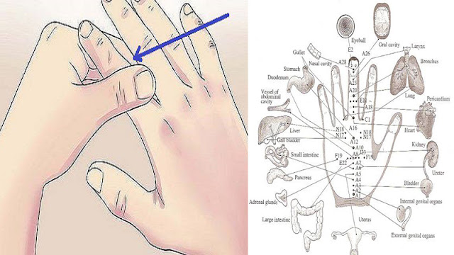 2tH1fdA YOUR FINGER IS CONNECTED TO YOUR ORGAN! JAPANESE TECHNIQUE FOR CURING DISEASE!