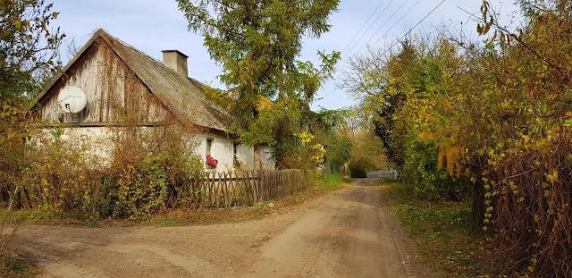 wieś Dzwonowo w Puszczy Zielonce