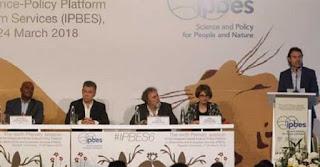 IPBES-informe-degradacion-critica-tierra-conjugandoadjetivos