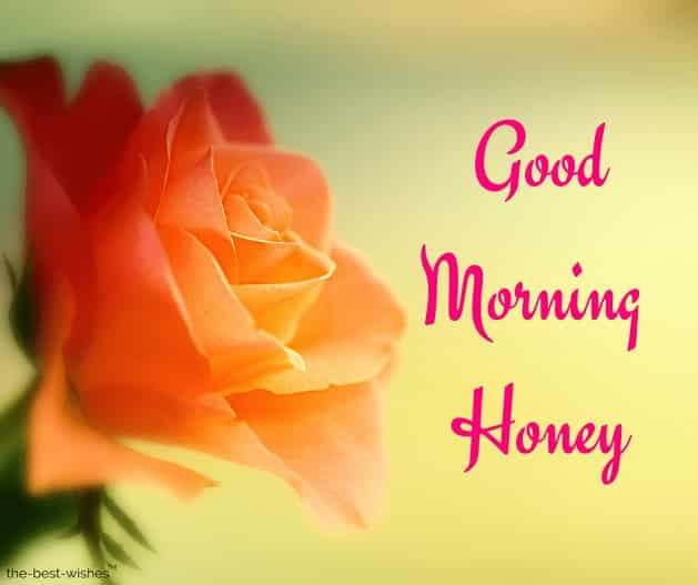 very good morning honey