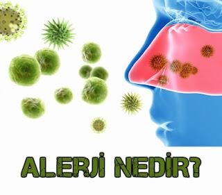 alerji, alerji nedir, allerji, alerji tedavisi, mevsimsel alerji, yaşam