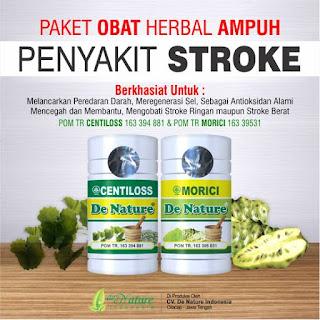 Obat herbal yang aman untuk stroke, Obat herbal untuk stroke, Obat herbal aman stroke