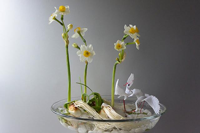 hoa thuy tien dep nhat 2