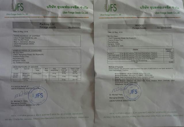 hóa đơn xuất nhập khẩu hạt giống cỏ tại Thái lan