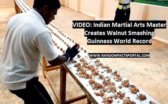 VIDEO: Indian Martial Arts Master Creates Walnut Smashing Guinness World Record