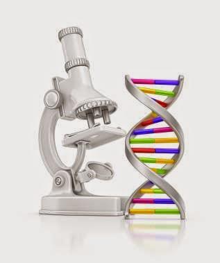 ib biology syllabus 2015 pdf