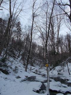 Mont Sutton, sentier Chute du Pékan l'hiver