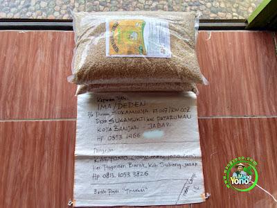 Benih pesana IMAM MUSTOFA Nganjuk, Jatim.  (Sebelum Packing)