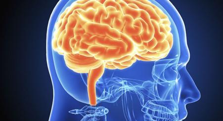 Brain new imaging technique,