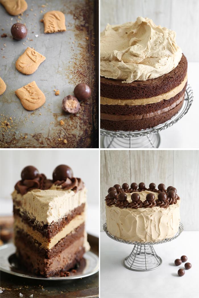 Malted Nutella Biscoff Brownie Torte Sprinkle Bakes
