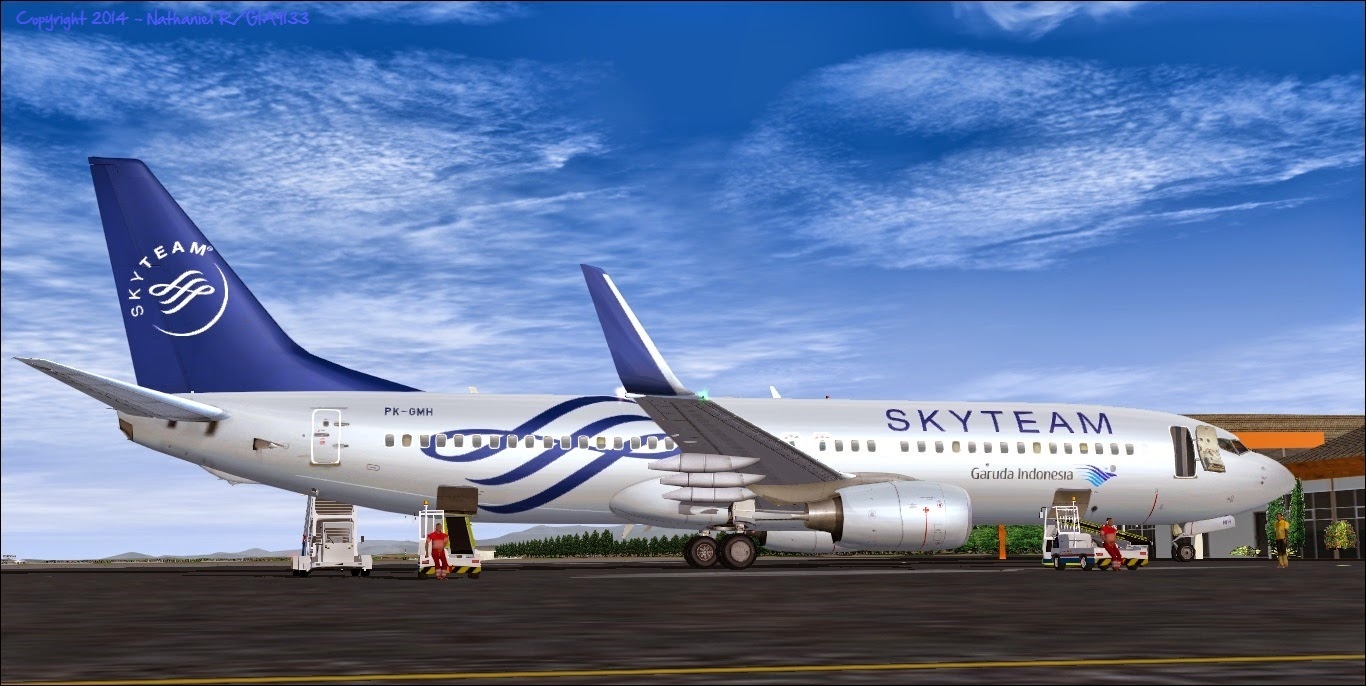 how to add liveries to ixeg 737