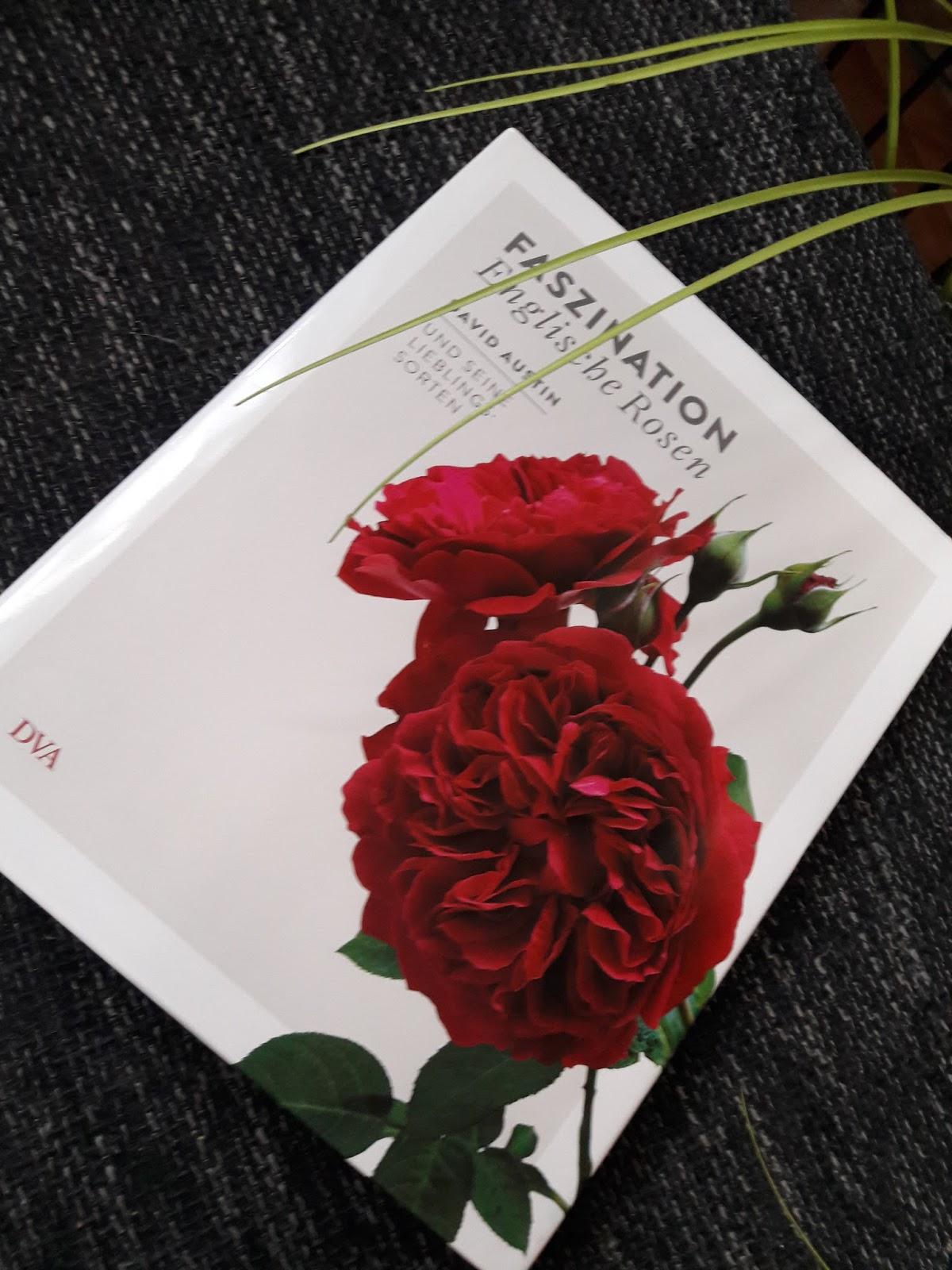 our red carpet of books rezension sachbuch faszination englische rosen von david austin. Black Bedroom Furniture Sets. Home Design Ideas